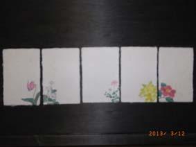 RIMG0129.JPG